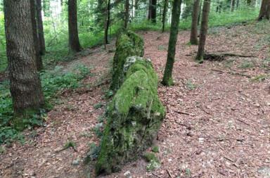 Diese von Moos überwachsene Steinreihe auf einem Hügel ist auf die Kirche von Mettmenstetten ausgerichtet. Oder anders ausgedrückt: Die Kirche von Mettmentstetten wurde genau auf dem Schnittpunkt dieser Linie gebaut.